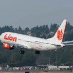 Jatuh di Tanjung Karawang, Lion Air JT 610 bawa 181 penumpang dan tujuh kru