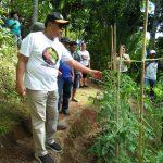 Gaghana Kunjungi Kebun Hortikultura Milik Masyarakat Petani